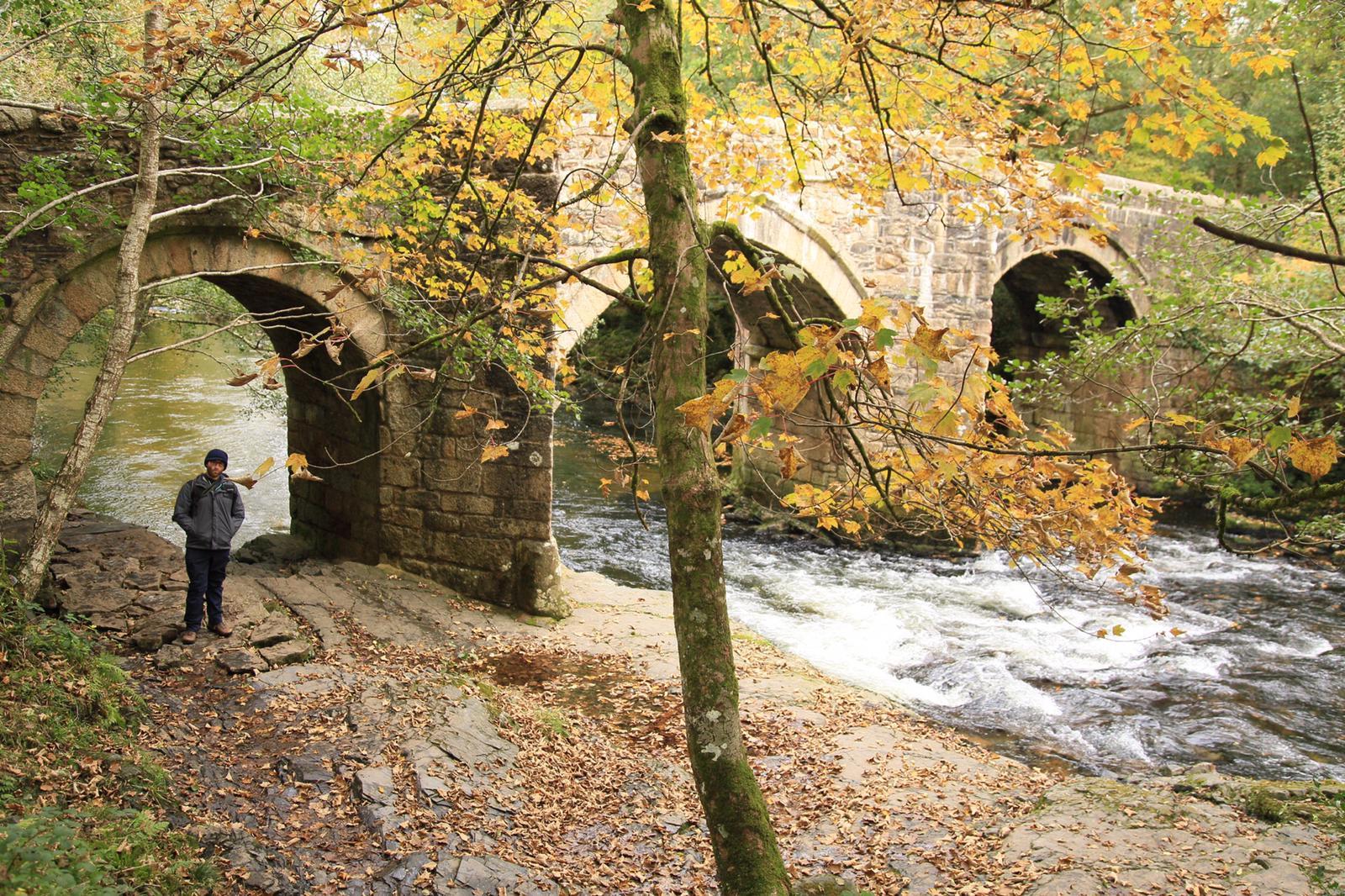 The Great Dartmoor Adventure