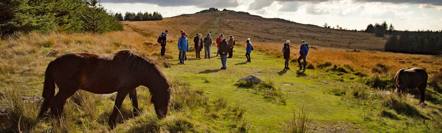Discover a Different Dartmoor